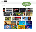 All images from Image Gallery extension