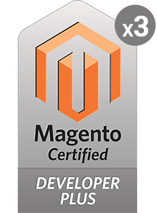 Magento Professional Developer